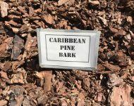 Caribbean Pine Bark (bulk)