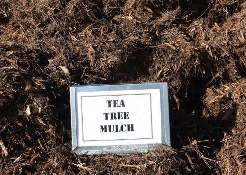 Tea Tree Mulch (bulk)